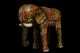 The Elephant 2015